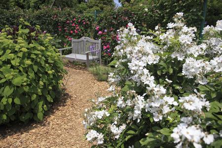 kana: Garden