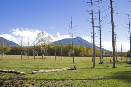 rancho: Mitsunori ranch of autumn