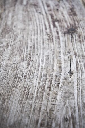 knothole: Wood grain