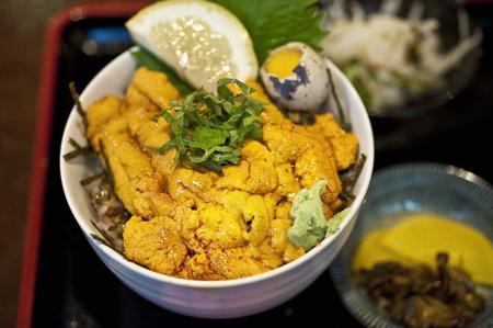 urchin: Sea urchin bowl Stock Photo
