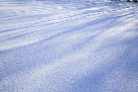 shadow: Snow shadow Stock Photo