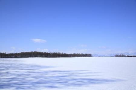 snowfield: Snowfield landscape with windbreak Stock Photo