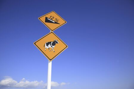 dairy cattle: Blue sky and road signs