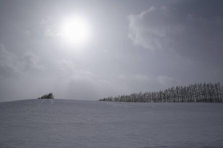 snowy field: Snowy field and sun