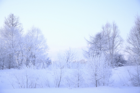 snowfield: Rime of the Snowfield.