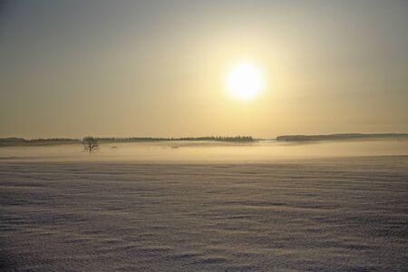 dawning: Snowy morning sun