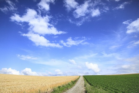straight path: Scenery Hill Stock Photo