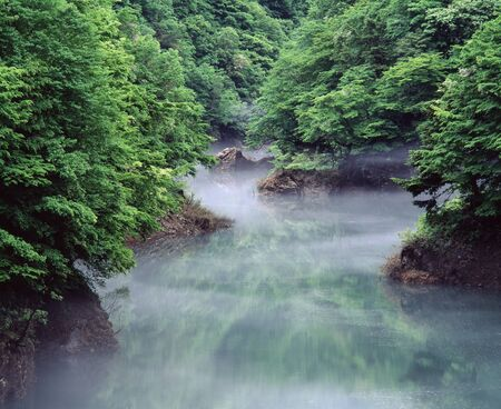 the surface of the water: Water surface of the morning mist Stock Photo