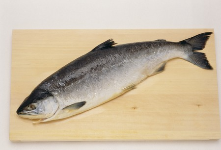 canadian: Canadian Salmon