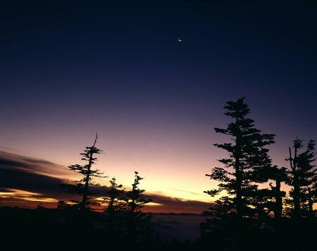 amanecer: Shirane del alba