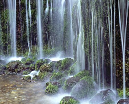 water flow: Shiraito falls