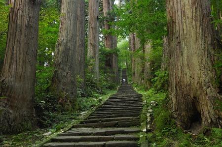 omotesando: Haguro mountain Omotesando