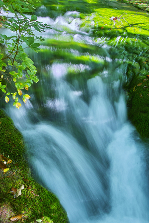 spring water: Spring water Stock Photo