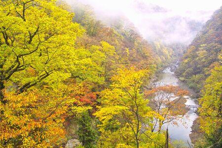 northeast: Dakigaeri Valley