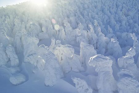 northeast: Rime ice