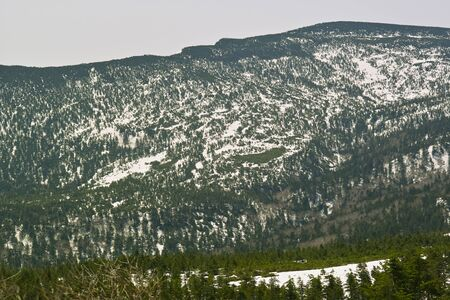 lingering: ZAO mountains