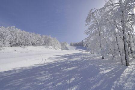 스키 지역 스톡 콘텐츠