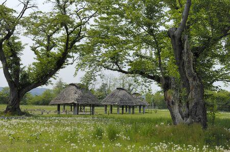 stilt house: Ancient house Stock Photo