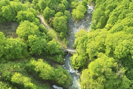 mountain stream: Shirokekura mountain stream