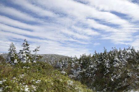 온 습지와 구름 위에 스톡 콘텐츠