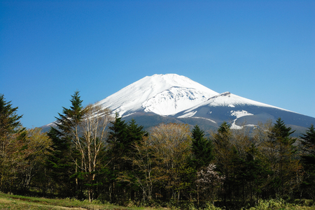 early spring snow: Mt. Fuji