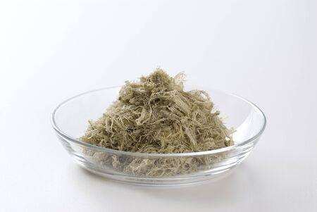 alga marina: Tororo algas