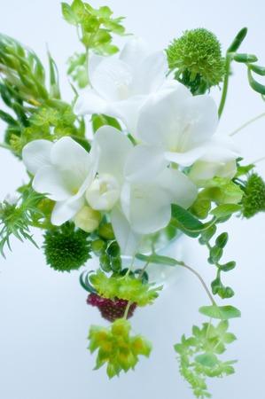 フリージアのいたずらな花瓶 写真素材