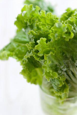 a frill: Frill lettuce