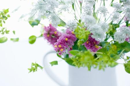naughty: Naughty vase of statice
