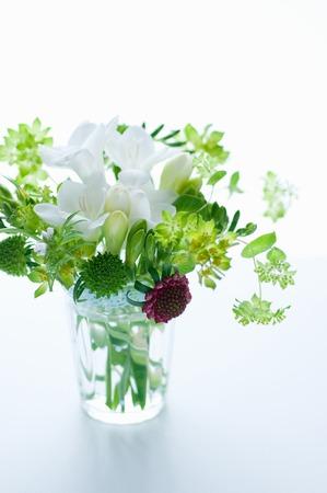 naughty: Naughty vase of freesia
