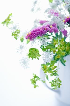 スターチスのいたずらな花瓶