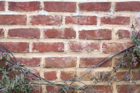 赤レンガの壁