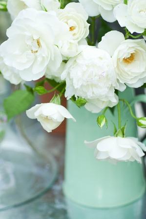 バラの花瓶の花瓶