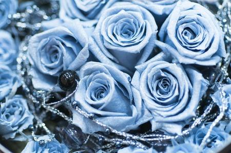 blue roses: Blue Roses Stock Photo