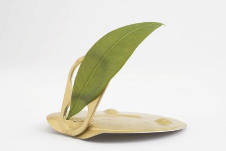 pulltab: Pull-tab and leaves Stock Photo