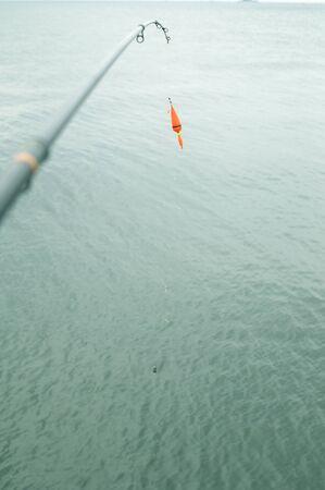 fishing rod: Fishing rod