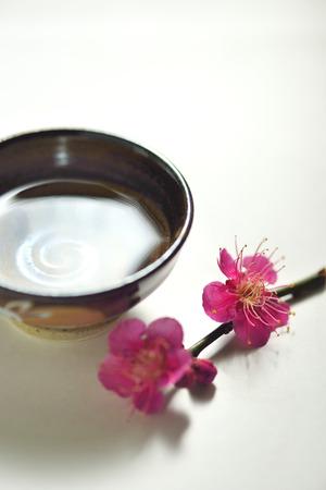 sake: Sake y ciruela