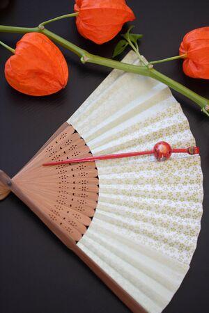hairpin: Sense and hairpin and Houzuki Stock Photo