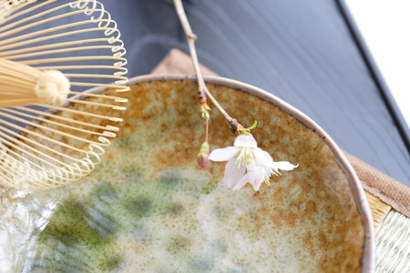 smartness: Early flowering cherry tree and bamboo whisk