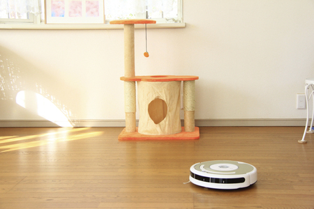 electric material: Cleaning robot and a cat tower