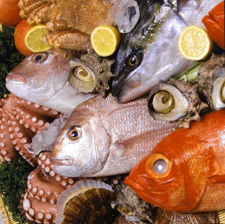 魚介類は、魚介類を設定