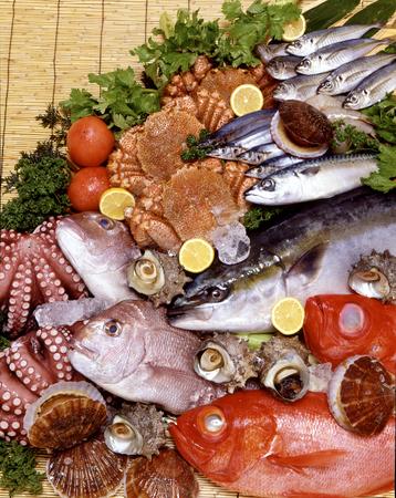 新鮮な魚料理セット