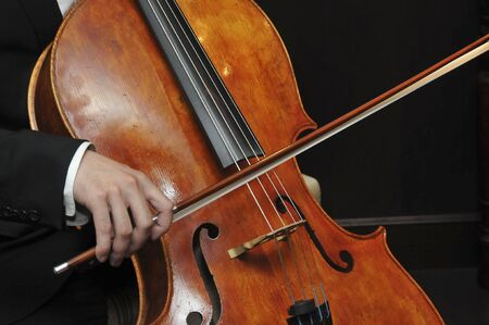 cellist: Cellist Stock Photo