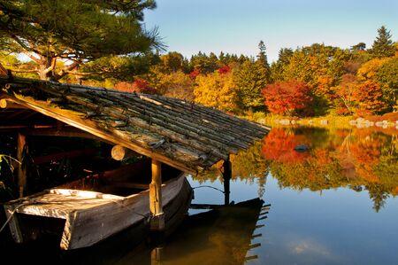 apology: Autumn Japanese garden Stock Photo