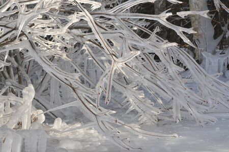 icefall: Icicle arrived at the twig