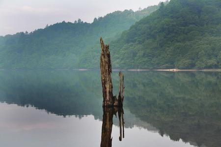 lakeside: Round Lake lakeside