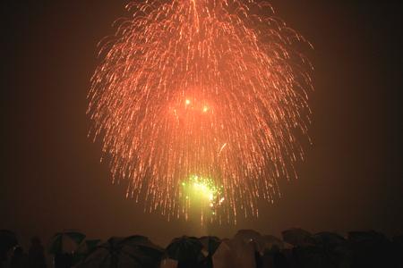 winter dance: Fireworks