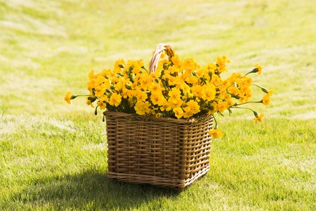 turf flowers: Flower basket on the lawn