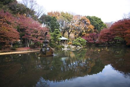 Cloud pond of autumn leaves 版權商用圖片