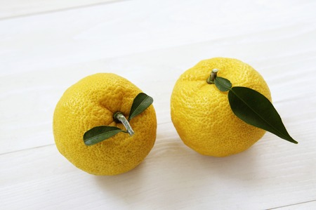 Citron fruit
